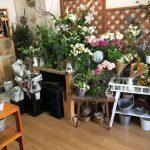 フードワン隣に田奈駅のお花屋さん!